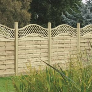 curved topped trellis