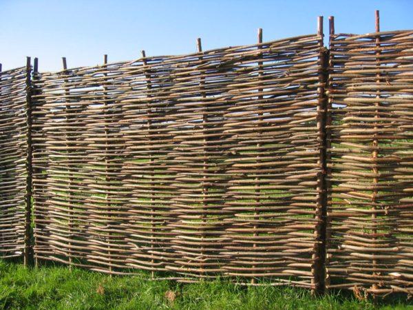 hazel hurdle fence