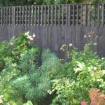 featheredge fence