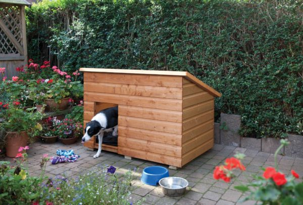 wooden kennel